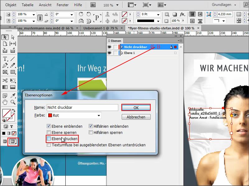 InDesign Notizen, InDesign Attribute für nicht druckbare Objekte ...
