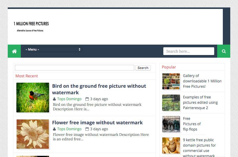 Screenshot: 1millionfreepictures.com