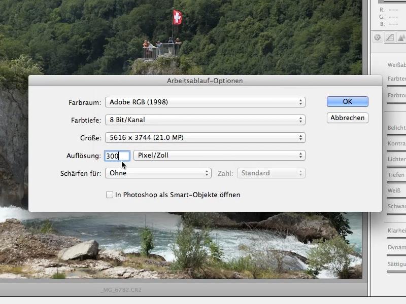 Camera Raw: Arbeitsablauf-Optionen: Auflösung
