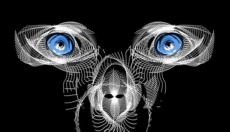 Malsymmetrie in Photoshop CC