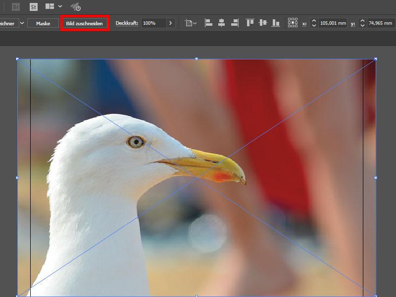 Neue Zuschnitt-Funktion in Adobe Illustrator CC