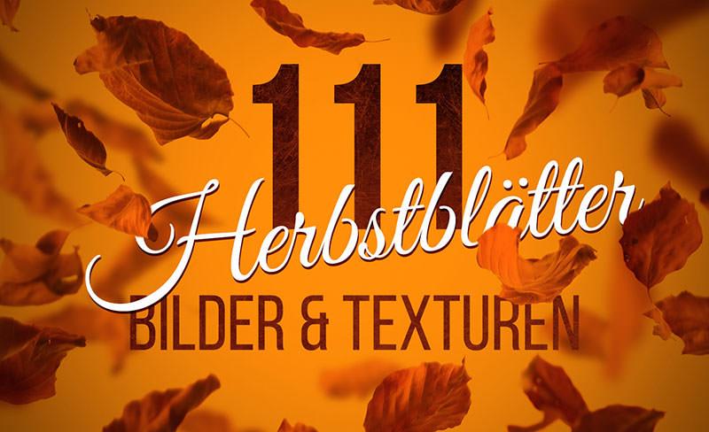 Texturen Herbstblätter