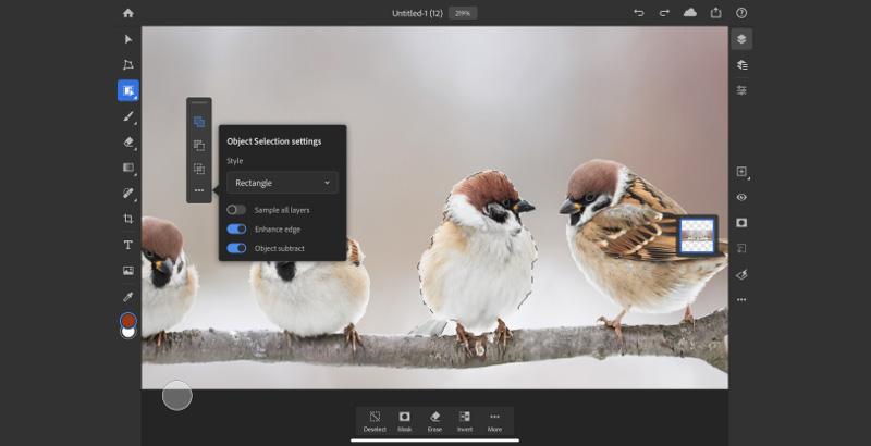 Objektauswahlwerkzeug in Photoshop für iPad
