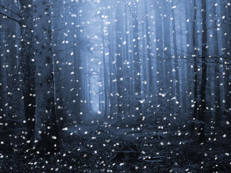 Schneeflocken in Photoshop