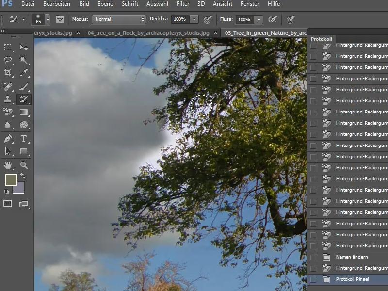 Photoshop elements 15 hintergrund andern