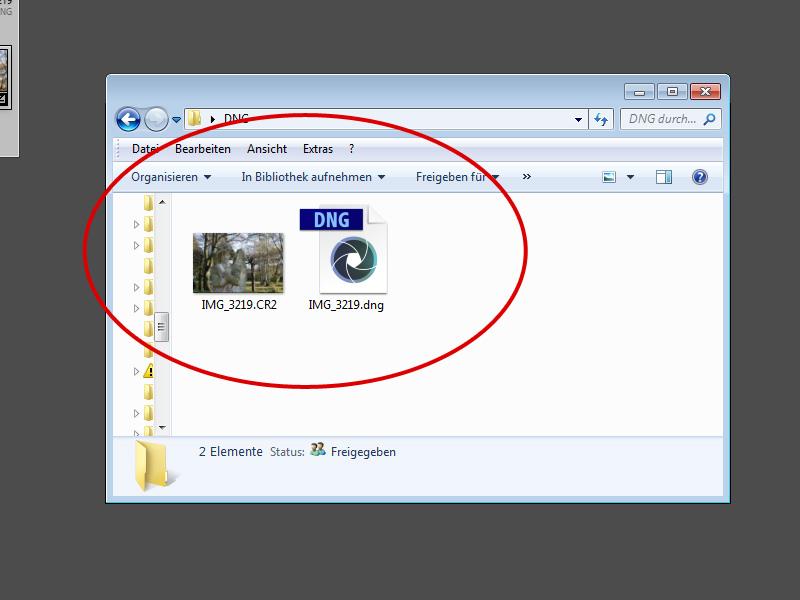 Dng Datei öffnen