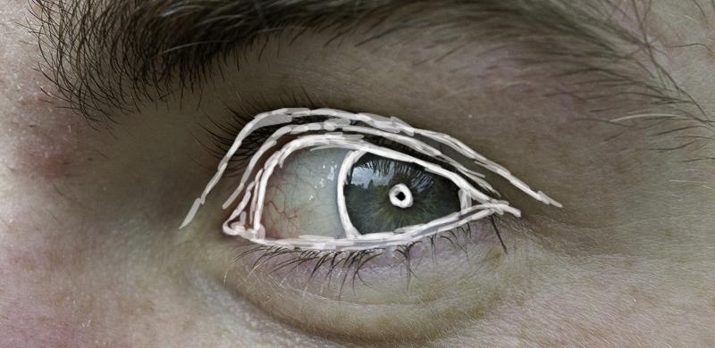 Augenlid sichtbare adern Adern unter