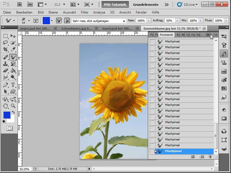 tutorial neue funktionen in photoshop cs5 mischpinsel werkzeug. Black Bedroom Furniture Sets. Home Design Ideas