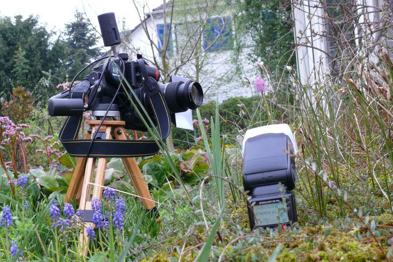 So sah der Aufbau für das rechte Bild aus. Zum Einsatz kam für die Nikon D300 ein Nikon SB-900 der als Slave-Blitze eingesetzt und vom Kamerablitz als Master gesteuert wurde.