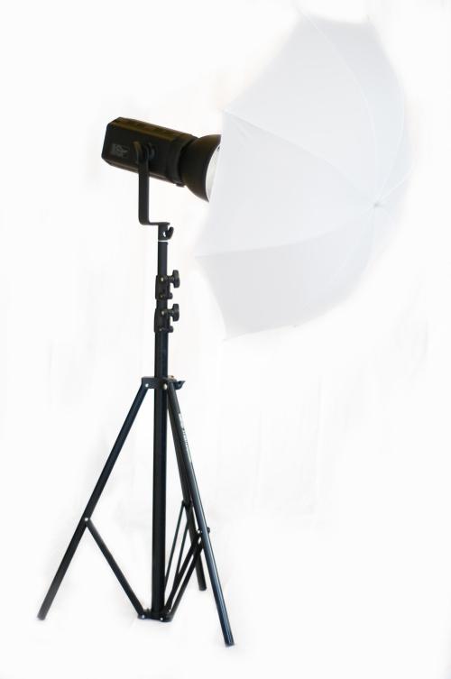 Ein Studioblitz mit Standardreflektor und Durchlichtschirm