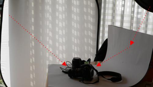 Hier wird das starke Sonnenlicht durch das Fenster mit Hilfe eines Diffusors abgemildert. Dazu dient hier ein weißer Falthintergrund.