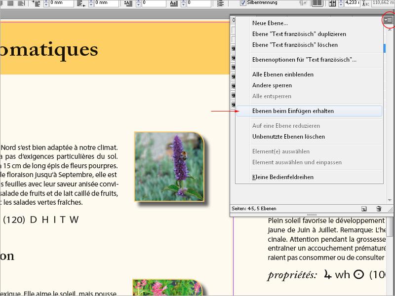 neuen katalog vorstellen schreiben muster