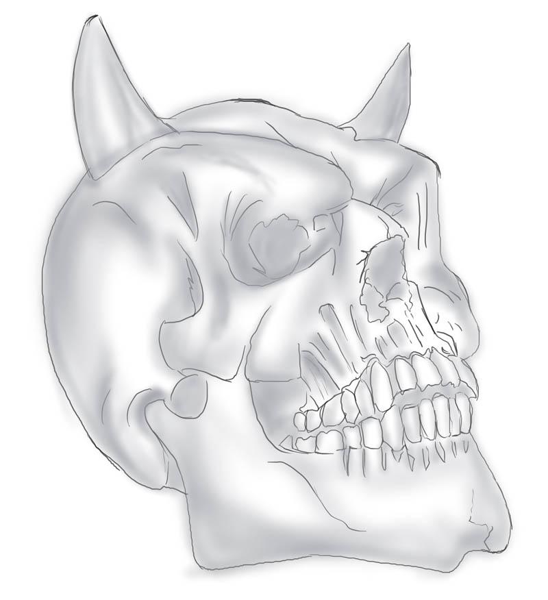 Ausgezeichnet Nasenhöhlen Ideen - Menschliche Anatomie Bilder ...