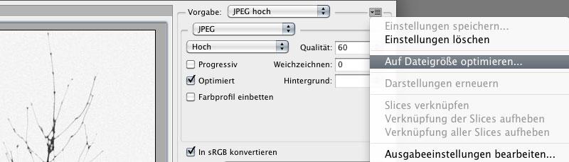 """Optionen im Dialog """"Für Web und Gerte speichern"""""""
