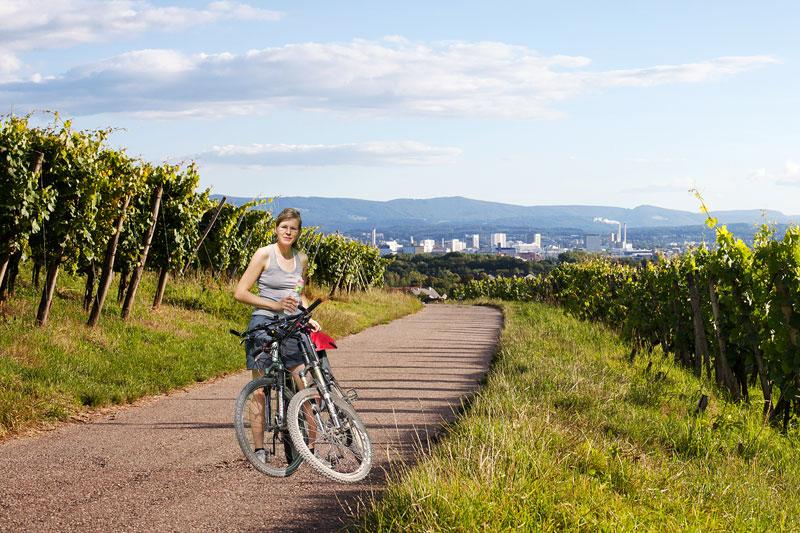 Platzierung eines Fahrrads in den Weinbergen