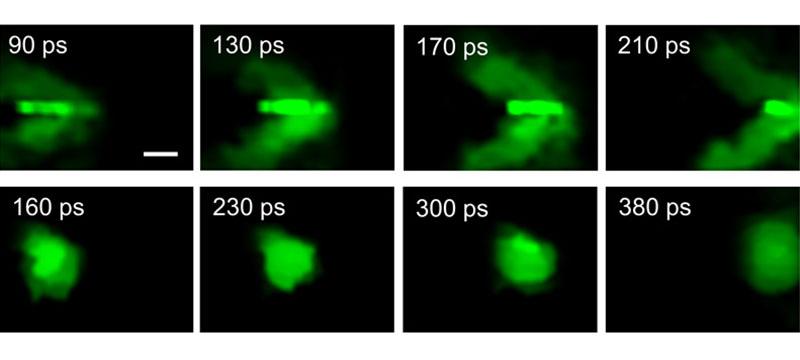 """100 Milliarden Bilder pro Sekunde: Forscher nehmen """"photonischen Mach-Kegel"""" auf"""