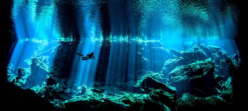 Ausgezeichnete Unterwasser-Fotografen