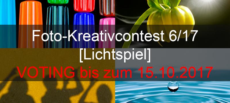 Voting Foto-Kreativ-Contest
