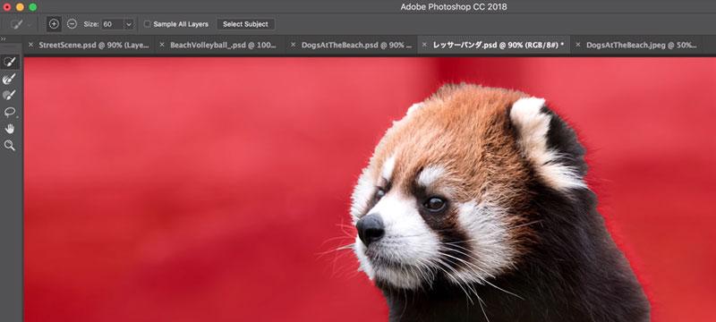 Neues Auswahl-Tool für Photoshop CC vorgestellt