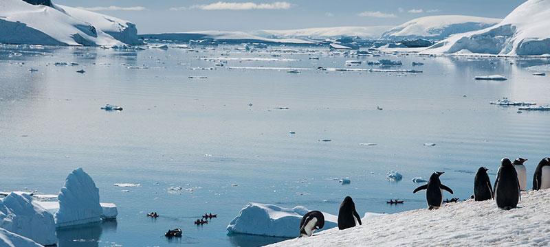 Projekt: Antarktis – ein Fotograf erklärt seinen Adobe Stock-Workflow