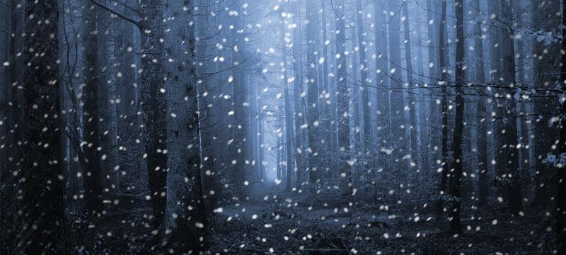 Photoshop CC: Schneeflocken fallen lassen