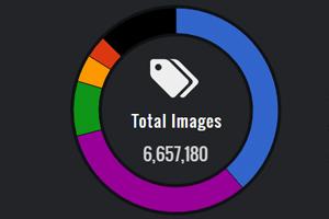 Die beliebtesten Kameras im Web