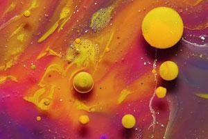 Zeitraffer: Blütenblüte/Makro: Farbenspiel
