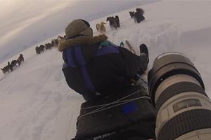 Grönland – faszinierende Fotos aus einer endlosen Landschaft