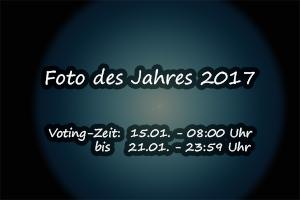 "Voting ""Foto des Jahres"""
