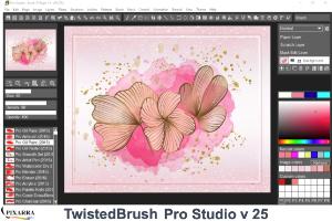 TwistedBrush Pro Studio 25
